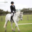 Stressless dressage at Mill Lane Stables Brayton Yorkshire